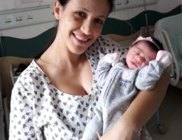 Parto na penumbra; parto humanizado; parto cesariana; parto respeitoso; parto cesárea; cesárea intra-parto; Bem-Nascida