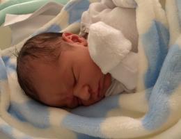 Parto na penumbra; parto humanizado; parto cesariana; parto respeitoso; parto cesárea; cesárea humanizada; Bem-Nascido