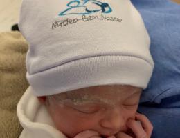 arto na penumbra; parto humanizado; parto cesariana; parto respeitoso; parto cesárea; Bem-Nascida; Indução de parto