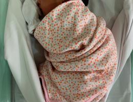 Parto na penumbra; parto humanizado; parto cesariana; parto respeitoso; parto cesárea; cesárea apresentação pélvica
