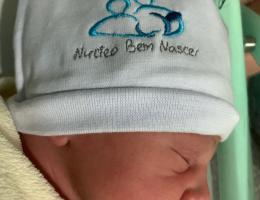 Cesárea prévia; parto humanizado; parto cesariana; parto respeitoso; parto cesárea; cesárea humanizada; Bem-Nascido; Birth